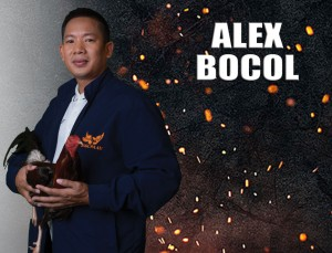 ALEX BOCOL