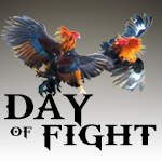 day of fight