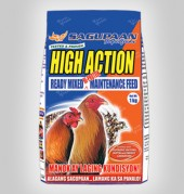 p-high-action