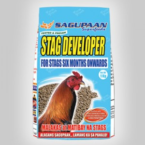 p-stag-developer
